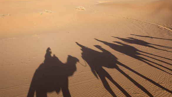 Crescere Girovagado_Marocco_cammelli nel deserto