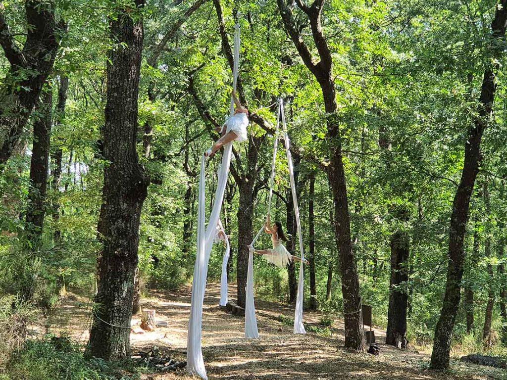 La foresta di Piegario_ballerine volanti