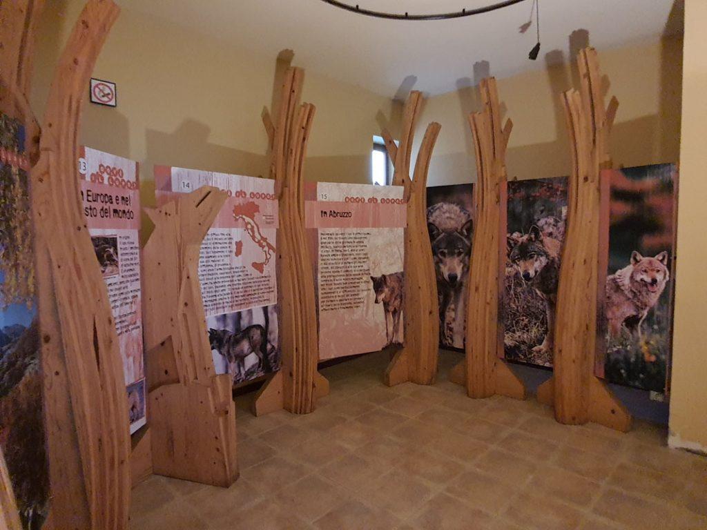 Centro visite del Lupo Popoli_museo interno